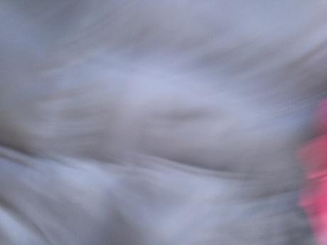 20130310-012405.jpg